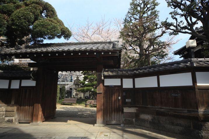 裏門の屋敷門は、庭園の雰囲気をさらに味わい深くしています。通常は開いていません。